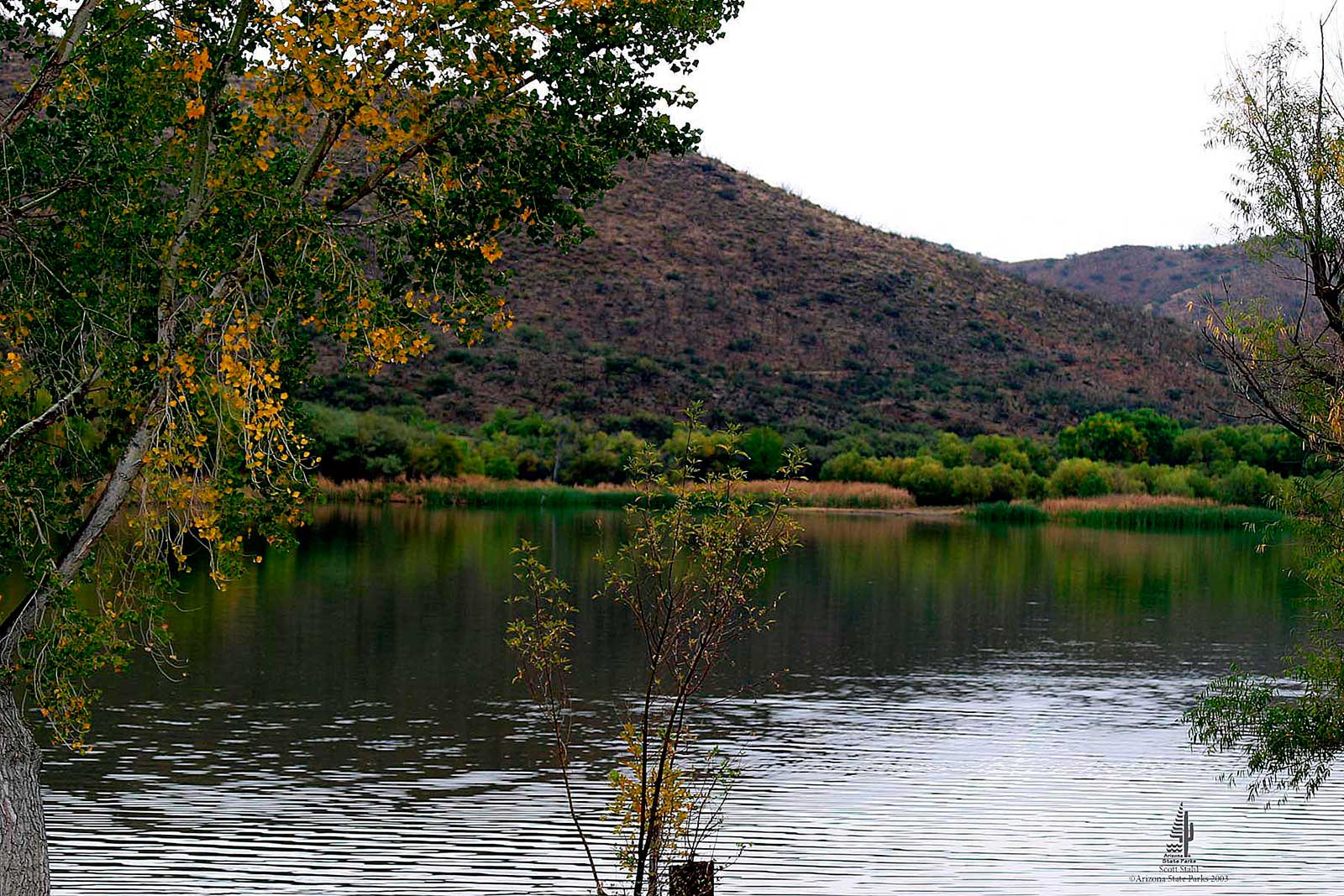 Patagonia lake state park tucson attractions for Patagonia lake fishing