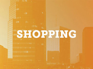 shopping attractions page